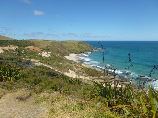 Omapere, Nieuw-Zeeland: Coastal view