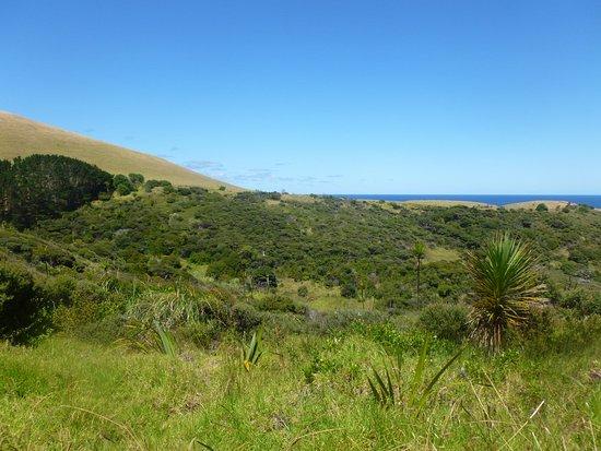 Omapere, Neuseeland: Abel Tasmin