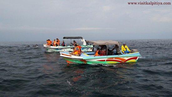 Visit Kalpitiya Tours & Holidays
