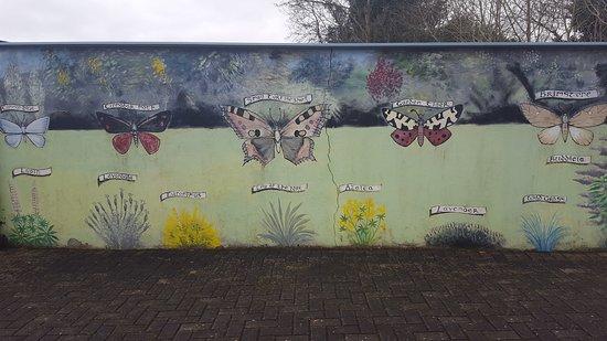 Dromod, Irlanda: 20170305_122008_large.jpg