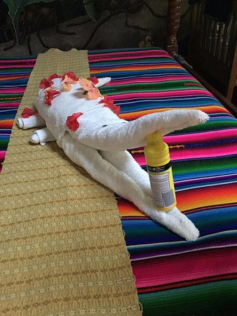 Ian Anderson's Caves Branch Jungle Lodge: Towel Origami