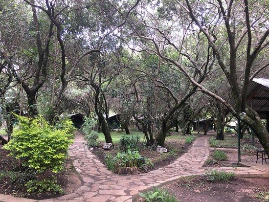 Mara Sidai Camp Photo