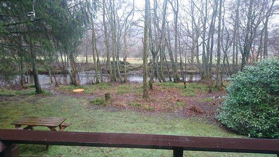 Comrie, UK: DSC_1011_large.jpg