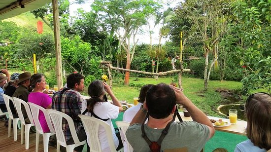 Ujarras, Costa Rica: Just sit back, have a meal or a drink  and watch birds!