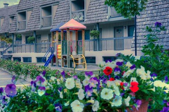 Tunnel Mountain Resort: Playground