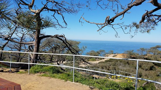 Torrey Pines State Natural Reserve: High Point Overlook- you can see the city up there