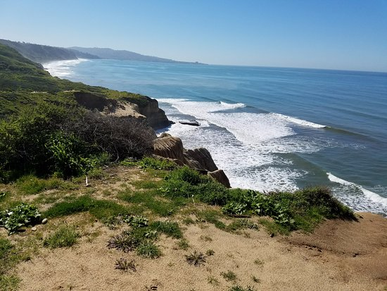 Torrey Pines State Natural Reserve: Yucca and Razor point trail