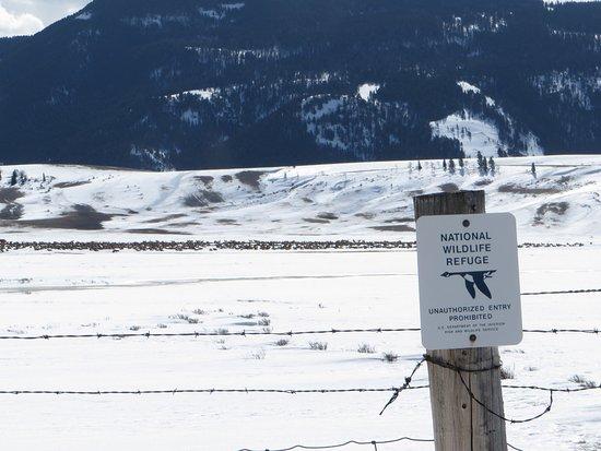 National Elk Refuge: photo0.jpg