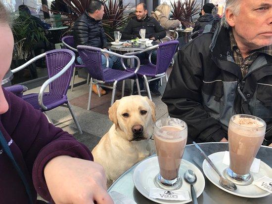 Dog Friendly Restaurants Mumbles