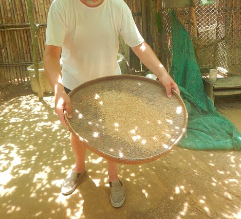 Butterfly Complex Center: sifting rice
