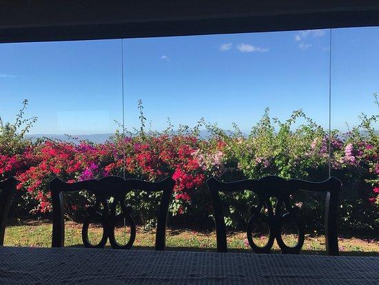 Grecia, Costa Rica: photo1.jpg