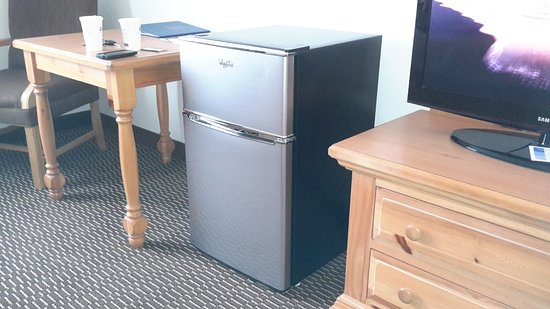 East Ellijay, GA: Cute little fridge in room..looks like a regular fridge but miniature