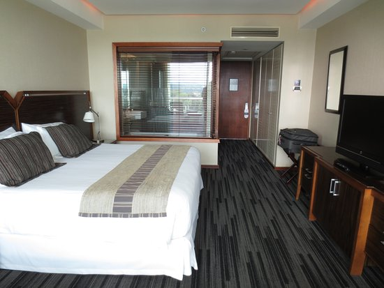 Hotel Dreams Valdivia: King Bedded - Balcony w. River View Room