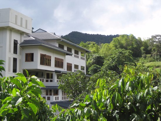 Amanecer a retreat spa specialty hotel reviews for Specialty hotels