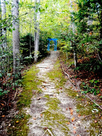 Gerton, NC: Wooded Walking Trails