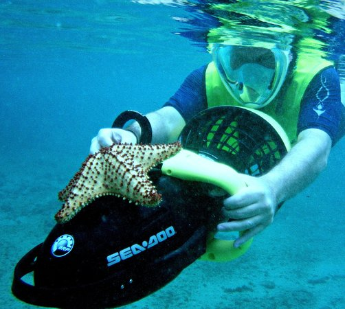 Frederiksted, St. Croix: Snorkeling on under water propulsion scooter with Mermaid Adventures