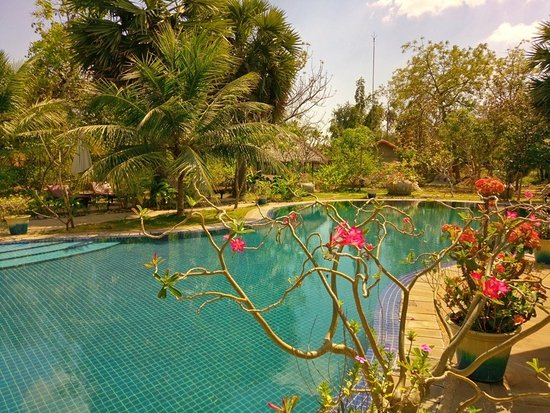 Battambang Resort: Pool and garden