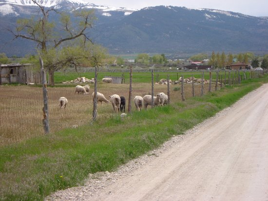 Spring City, Γιούτα: Sanpete Valley is so picturesque and takes one back in time