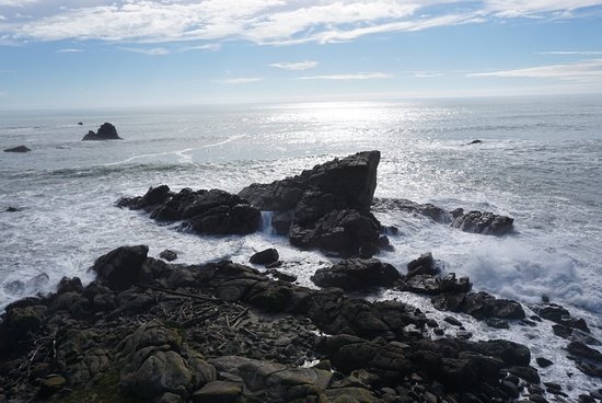 Cape Foulwind Walkway: photo4.jpg