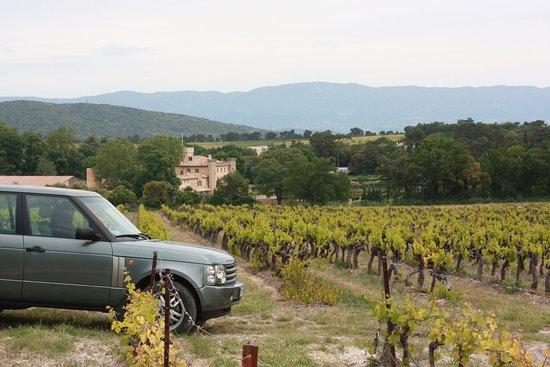 Rognes, Francia: Wine Safari à travers le domaine viticole et agricole