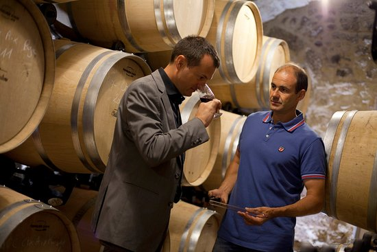 Rognes, Francia: Wine Tasting / Villa Baulieu Wines