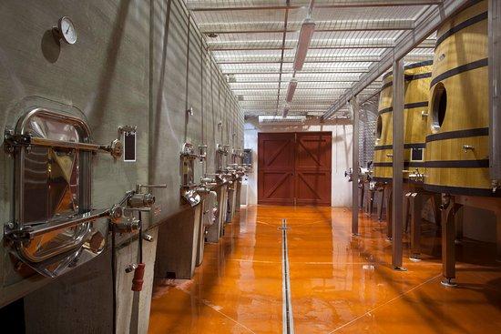 Rognes, Francia: Winery