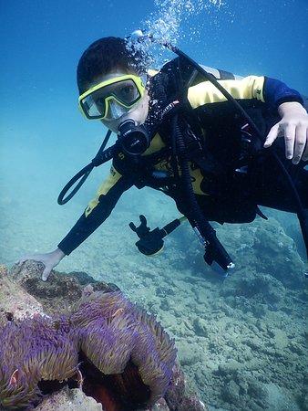 Poindimie, Nieuw Caledonië: un vrai baptème de plongée.