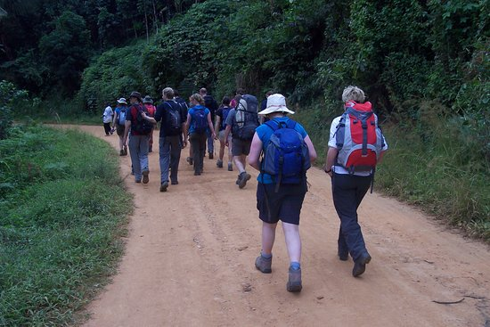 Chilunga Cultural Tourism