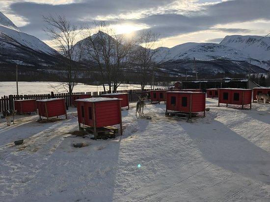 Troms, Noruega: photo2.jpg