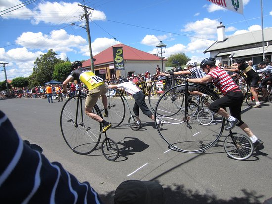 Evandale Market: Annual Penny Farthing Race at Evandale