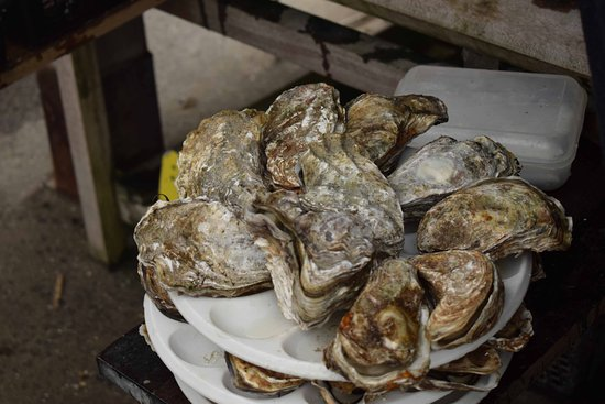 Cancale, France: A few more oysters, please...