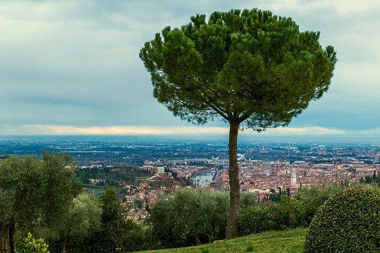 Corte San Mattia - Agriturismo Verona: Blick vom Restaurant aus.