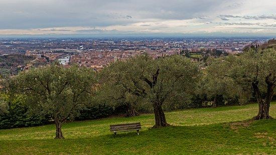 Corte San Mattia - Agriturismo Verona: Blick vom Zimmer aus.