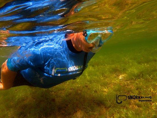 Snorkeling Experience: snorkeling in Las Canteras
