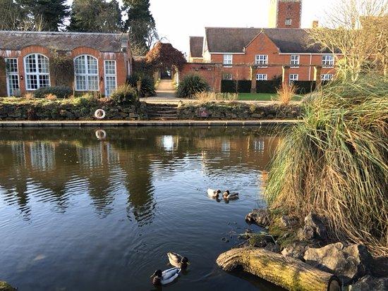Tylney Hall: Pond with ducks