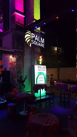 Palm Square Photo