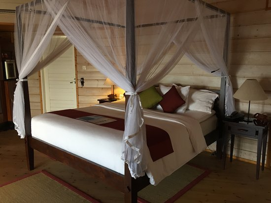 Kuredu Island Resort & Spa: water villa