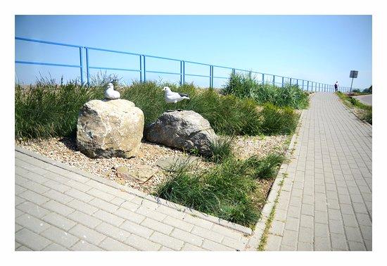 Pokoje GoScinne Przemyk: Tereny spacerowe w Rewie