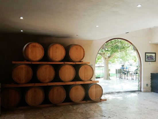 Go Cape Tours: Wine barrels on display