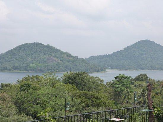 Giritale Hotel Picture