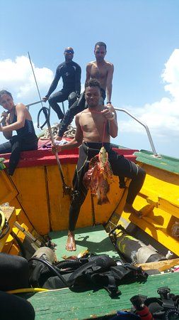 Negril Adventure Divers: Fish they caught while out diving