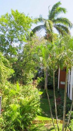 Occidental Tamarindo: resort grounds are very well kept
