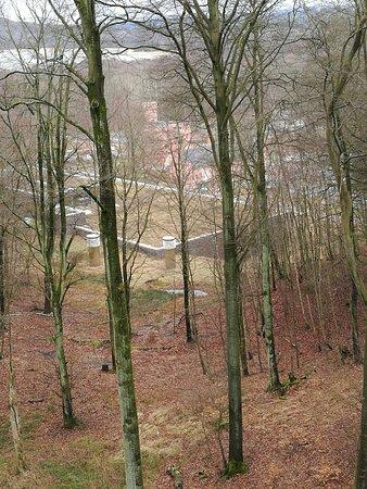 Naturerbe Zentrum Ruegen Photo