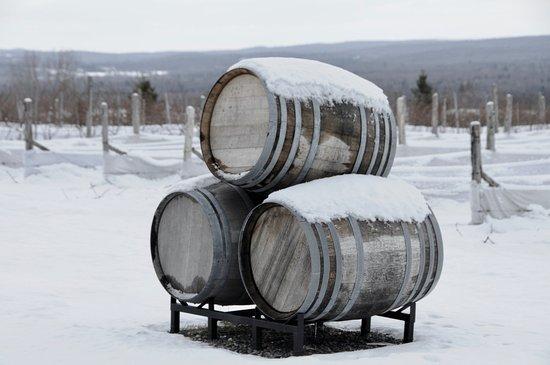 Brome, Canada: Cold