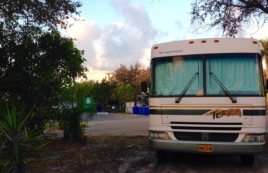 Oakland Park, FL: View of dumpsters and my Cuba license plate.