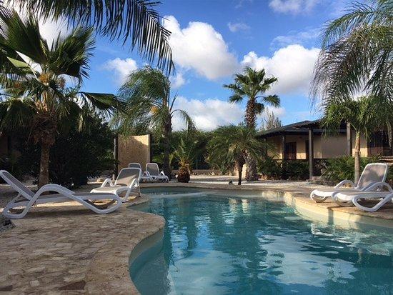 Bridanda Apartments Bonaire-bild