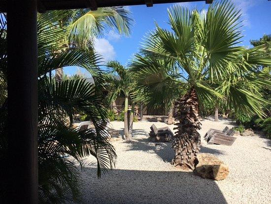 Bridanda Apartments Bonaire: Blick von der Terasse des Tortuga aus