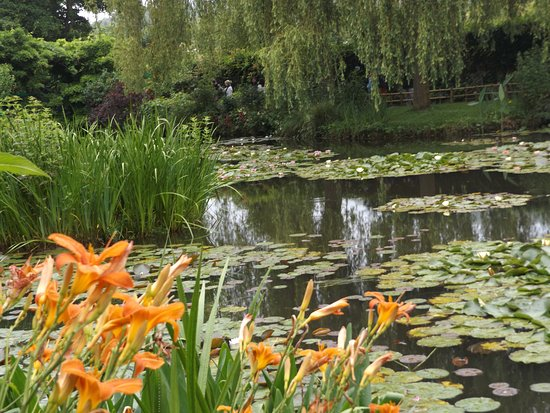 monets garden. - Picture of Claude Monet\'s House and Gardens ...