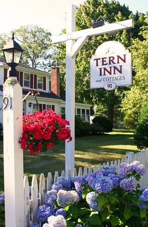 West Harwich, MA: The Tern Inn Entry