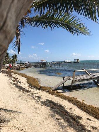 Caye Caulker, Belize: photo7.jpg